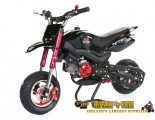 Hobbit Sport 50cc - Automatic - Disc Brakes - Kill Switch - Sport Brakes - Race Tyres