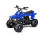 Anaconda 50cc - Automatic - 6'' Wheels - Speed Restrictor - Disc Brakes - Kill Switch